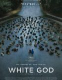 Beyaz Tanrı