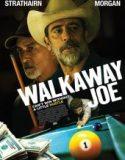 Kaçak Joe