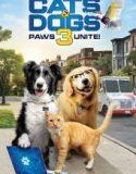 Kediler ve Köpekler 3