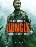 Orman – Jungle